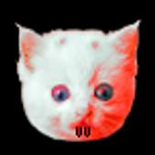 Death Kitty