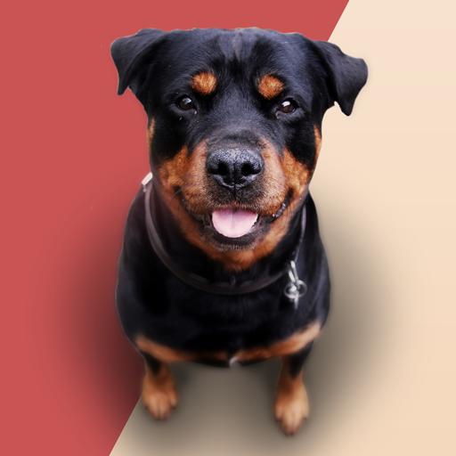 Barking Dog Sounds file APK Free for PC, smart TV Download