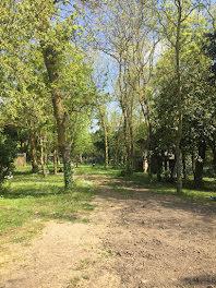villa à Saint-Pierre-d'Oléron (17)