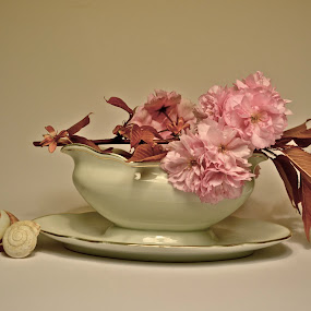 .... between us ..... by Anisja Rossi-Ungaro - Artistic Objects Still Life ( cup, rose, shells, white, flowers )