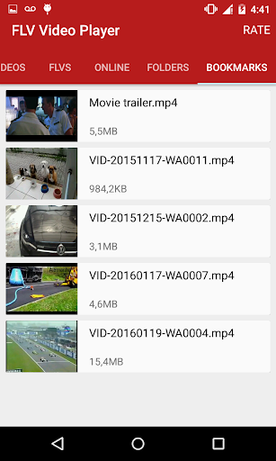 FLV Video Player screenshot 1