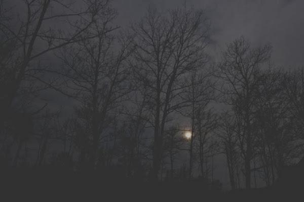 tramonto onirico di Ltz/rivadestra