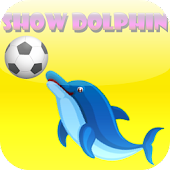 Show Dolphin