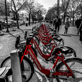Capital Bikeshare  by Chris Montcalmo - Transportation Bicycles ( colorsplash, cycling, bicycle rack, bike sharing l )