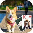 Solitaire Lovely Dogs Theme