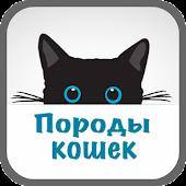 Породы кошек Энциклопедия