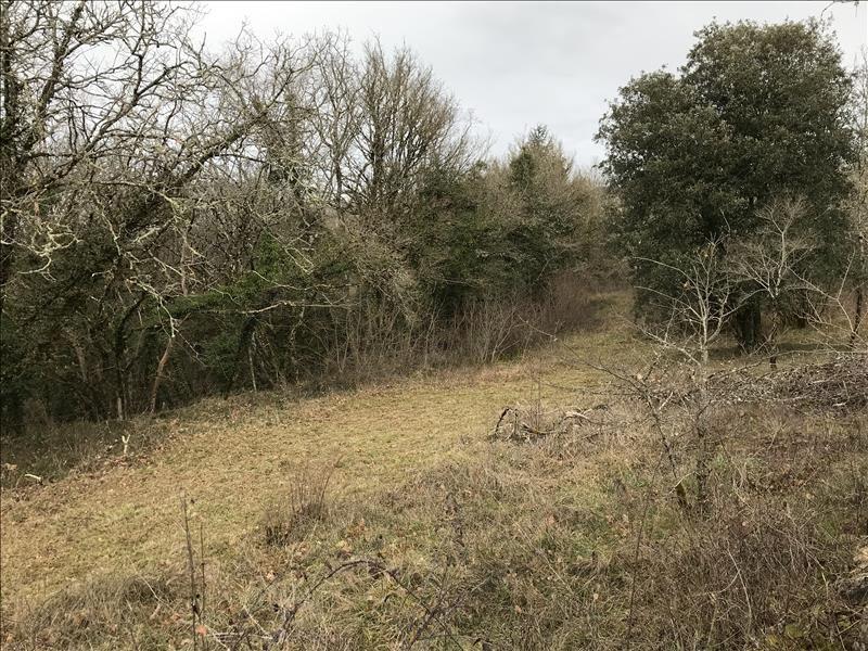 Vente terrain  2754 m² à Nespouls (19600), 34 500 €