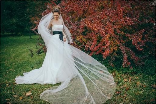 Vestuvių fotografas Sergey Nikitin (medsen). Nuotrauka 09.12.2014
