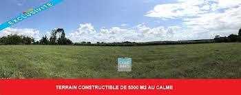 Terrain 5000 m2