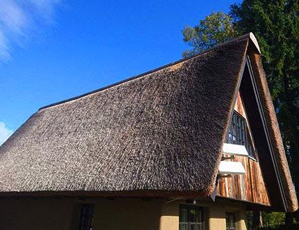 Dach trzcinowy na domku drewnianym