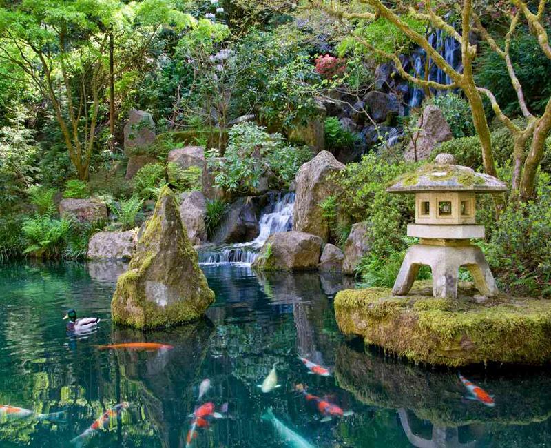 Japanese Water Garden Design- screenshot