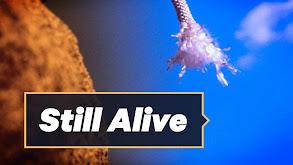 Still Alive thumbnail