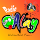 Radio Alay APK