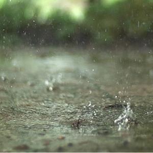 Real Rain Live Wallpaper 1.2 Apk