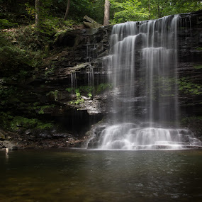 Harrison Wright Falls by Michael Sharp - Nature Up Close Water ( water, harrison wright, state park, waterfall, falls, pennsylvania, ricketts glen )