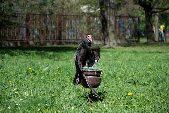 """Photo: V pátek 27. dubna 2012 proběhlo v rámci projektu EVVO ve venkovním areálu školy výukové dopoledne z biologie. Studentům byly předvedeny ukázky """"dravců a sov"""". Ukázky prováděla společnost Zayferus, která se zabývá chovem a ochranou dravých ptáků. Této akce se zúčastnili studenti 1. - 4. ročníku a delegovaní vyučující."""