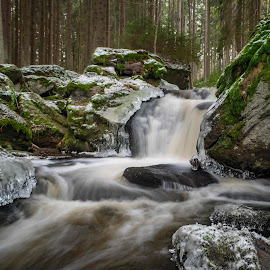 Waterfall Branka by Jiri Reisser - Nature Up Close Water