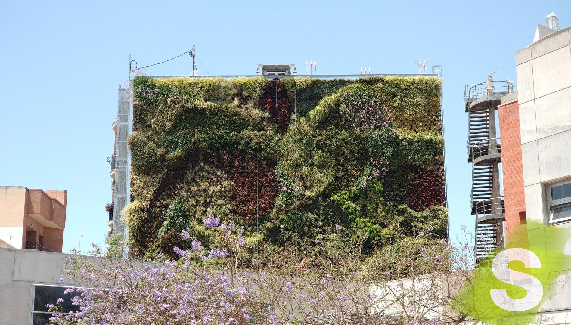 Jardín vertical instalado en la plaza del Ayuntamiento en San Vicente del Raspeig, Alicante