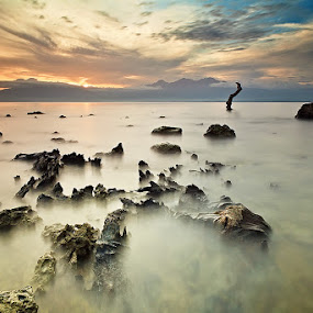 Stand Still by Hector Quiambao - Landscapes Waterscapes