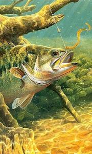 fishing wallpaper free screenshot 0