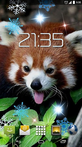 android Red Panda 4K Live Wallpaper Screenshot 2