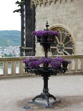 Photo: Rhine terrace