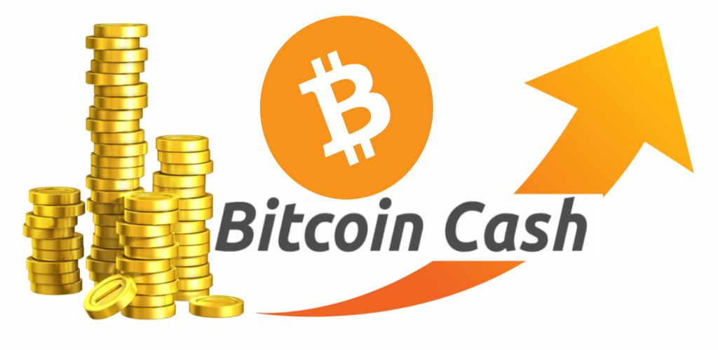 bitcoin cash turkiye bitcoin tranzaction system shark rezervor