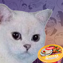 DRCA - Degradation Running Cat Amorality icon