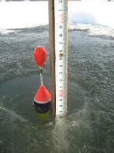 Photo: 2012.02.05. A leesett hó miatt nem nőtt a jég, maradt 17 cm.