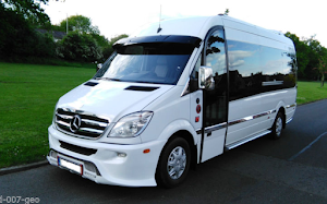 Local Mini Bus Travel 5 to 16 SeaterWhite  Mercedes Benz Van For Hire