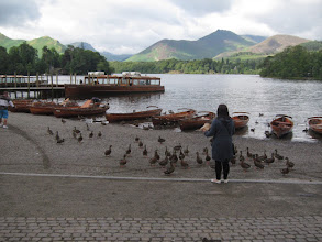 Photo: Down at the lake a woman feeds ducks ...