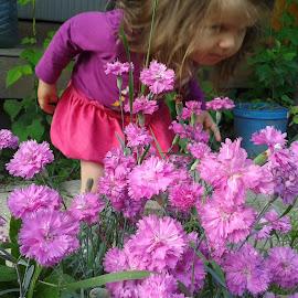 Maggie with the flowers by Yordan Stoyanov - Babies & Children Children Candids ( girl, pink, flowers, garden, flower,  )