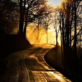 Spring Sunrise in Hocking Hills Ohio by Jim Crotty - Landscapes Travel ( ilesboro road, jim crotty, faith, calm photos, fine art, journey, hocking hills, beauty, landscape, rural, photography, tranquil, nature, ohio, serene, photographer, sunrise, hope )