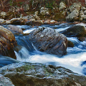 Rushing Water by Bryant Mountjoy - Nature Up Close Water ( water, mountain, linville, gorge, rocks, river )