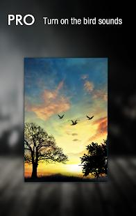 Sunset Hill Free Live Wallpaper