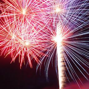 Idaho Fireworks by Gerrit Gulden - Public Holidays July 4th ( fire work, firework, fireworks, fire works )