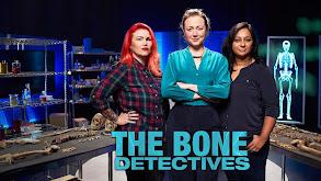 The Bone Detectives thumbnail