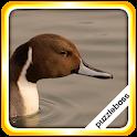 Lake Bird Jigsaw Puzzles icon