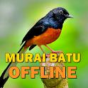 Kicau Suara Burung Murai Batu MP3 Offline icon