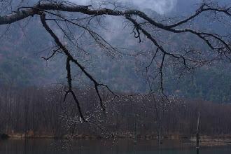 Photo: 池上