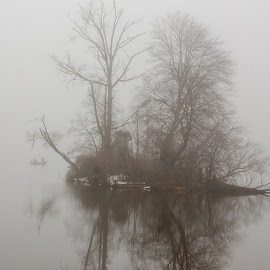 Fog at French Creek State PArk by Jerry Hoffman - Landscapes Weather (  )
