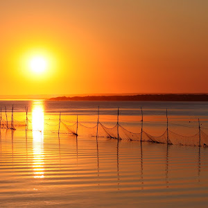 Wide Nets Sunrise.jpg
