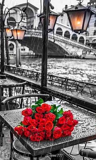 Raining Red Roses LWP