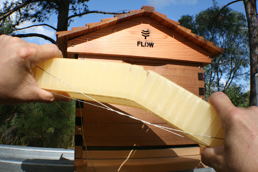 Flow hive beehive beekeeping review