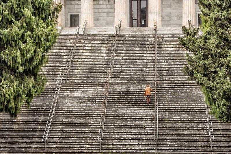 La scala della vita. di simone_ronca