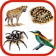 App Icon for Wildlife Southern Africa App in Czech Republic Google Play Store