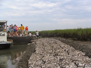 Photo: Building NFWF reef 2007
