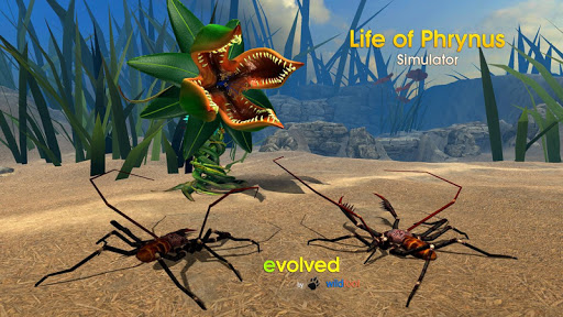 Life of Phrynus - Whip Spider screenshot 3