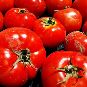 by Megi Šajn - Nature Up Close Gardens & Produce ( red, nature, light, nature up close, tomato )
