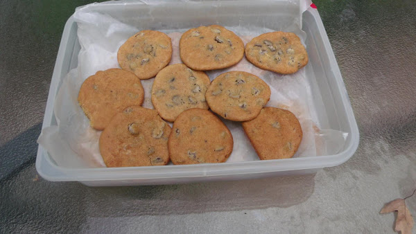 Blue Bonnet Margarine Choc Chip Cookies Recipe